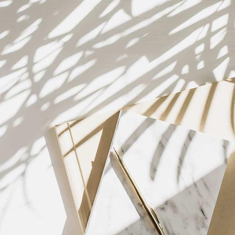 zdjęcie cień palmy